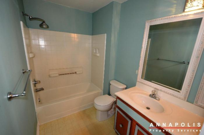 2008-peggy-stewart-way-301-id857-master-bath-an