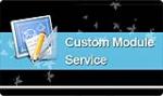 DNNSmart Custom Module Services