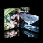 Image Grid with Stylish Light-box Gallery
