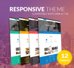 Responsive Theme BD001 Pack / 12 Colors / Business / Mega Menu / Mobile / Page Template