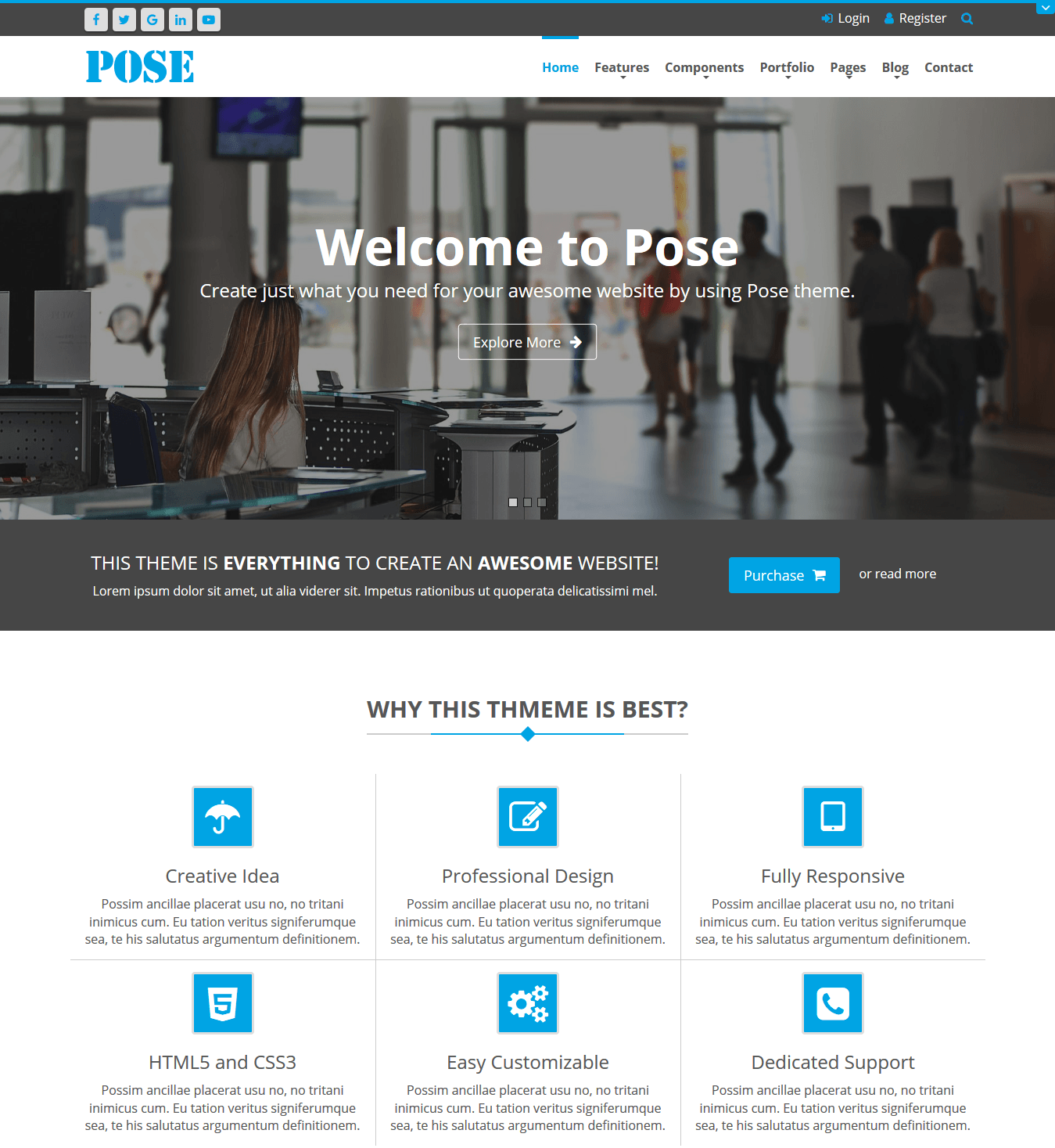 DNN Store > Home > Product Details > Pose Responsive Theme