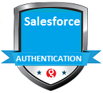 Salesforce Authentication SPI