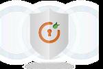 DotNetNuke (DNN) SAML IdP