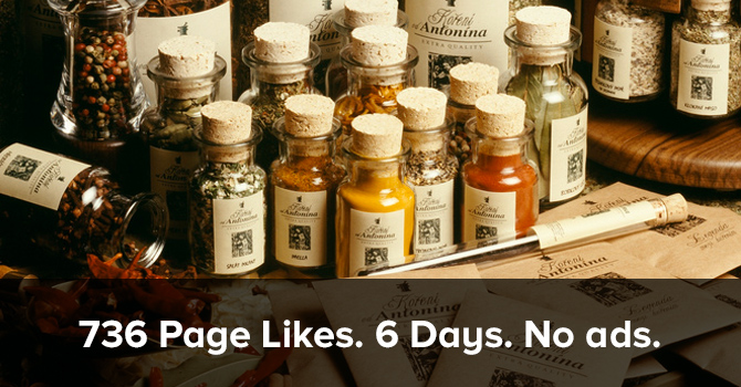 How a Small Spice Shop got 736 Page Likes in 6 Days (Without Ads)