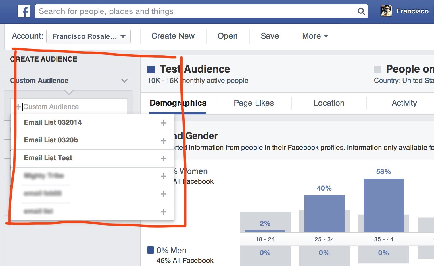 Facebook Audience Insights - Custom Audience