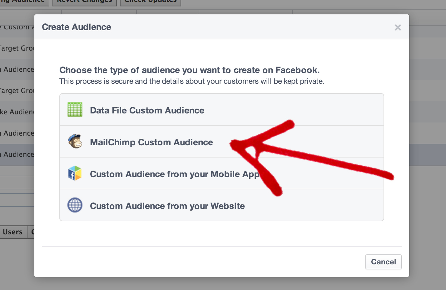 Create a Mailchimp Custom Audience