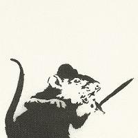 RoboMouse's avatar