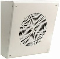 Angled Front Amplified Metal Box Speaker