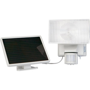 Solar-Powered 10Watt Security Floodlight