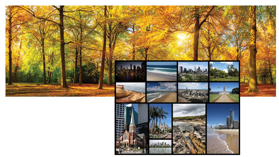Panorama & Collage pic
