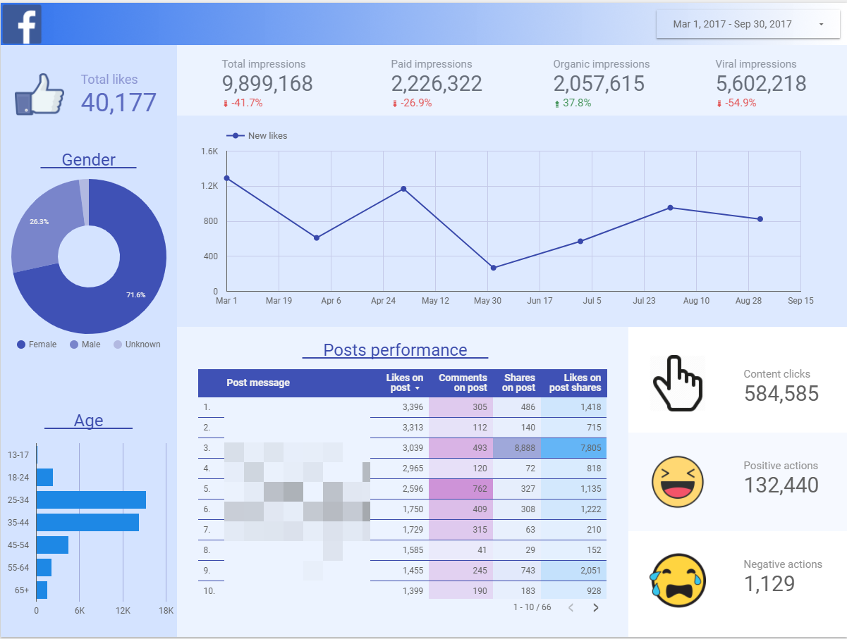 facebook insights reporting template by Optimizing Audience