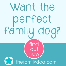 Want the perfect family dog?  Click here!