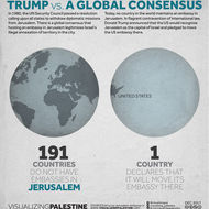 Trump vs A Global Consensus