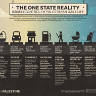 The One State Reality