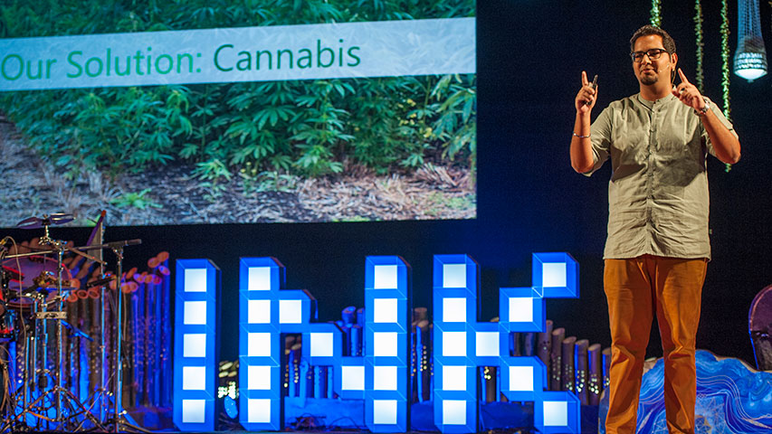Sanvar Oberoi: I am a cannabis farmer