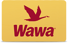 Cards From Wawa: Wawa Gift Cards, Wawa Credit Card, & More | Wawa