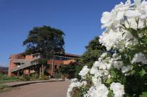 Flowers bloom on the campus of Africa University. Photo by Kathleen Barry, United Methodist Communications.