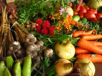Ecologically grown vegetables. Photo by Elina Mark, Wikimedia Commons.