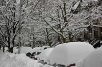 Snow covered cars in Bay Ridge, Brooklyn, NY.