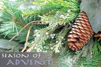 Season of Advent pine cones.  Photo by Kathryn Price, United Methodist Communications