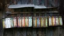 Rusty mailboxes on a wooden fence. Image by Skitterphoto, iStockphoto.com.