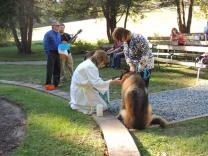 The Rev. Lisa Bandel leads the annual Blessing of the Animals in the Green Cathedral at Davidsonville (Maryland) United Methodist Church.