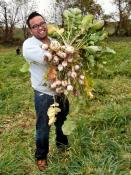 Society of St. Andrew Volunteer Marvin Mallari has just gleaned turnips.