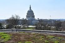 Photo shows the green roof on the top of the United Methodist Building in DC on Capitol Hill. Courtesy of Board of Church and Society, Tricia Bruckbauer.