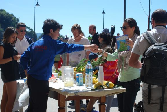 Youth selling lemonade as a fundraiser. Photo by Mary Bettini Blank, Pixabay.com.