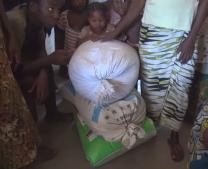 Farmers in Tilorma village in Sierra Leone show three bags of rice seed they managed to save through the many months of Ebola quarantines.