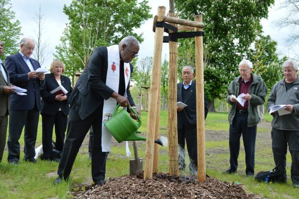 San Francisco Area Bishop Warner Brown Jr., president of the Council of Bishops, waters a newly planted tree in the Luther Garden in Wittenberg, Germany. The Lutheran World Federation is inviting churches around the globe to plant a tree in the garden and another in their area as part of preparations for the 500th anniversary of the Protestant Reformation in October 2017. Photo by Klaus Ulrich Ruof