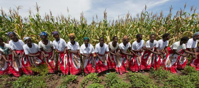 """Women sing and dance to celebrate a successful corn crop in Nkhafi, Malawi. """"We are farmers, they sing."""