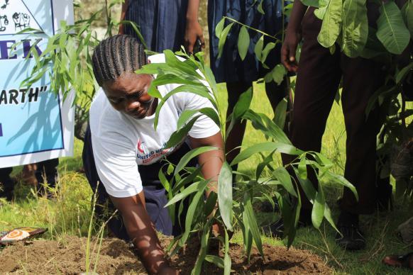 Student Susannah Gaye of Bassa High School plants a tree Buchanan City, Grand Bassa County, Liberia, as part of a United Methodist effort to combat climate change. Photo by E Julu Swen, UMNS.