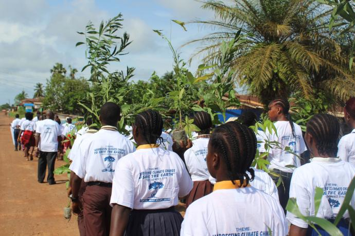 Students parade through the streets holding trees as part of a Liberia Conference tree planting and awareness program in Buchanan City. Conference leaders consider tree planning one step in efforts to combat the effects of climate change in Liberia. Photo by E Julu Swen, UMNS.