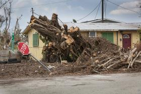 Piles of cut wood (photo on left) are all that remain of a large tree that fell when Hurricane Irma moved through Goodland, Fla. Photo by Kathleen Barry, UMNS.