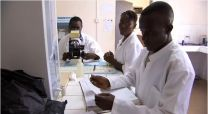 Health workers in Bo District, Sierra Leone see many cases of malaria.