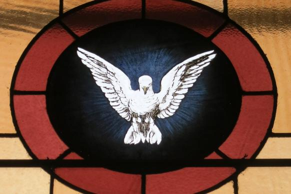Stained glass window of the Holy Spirit as a dove from the Church of the Atonement in Crooksville, Ohio. Photo by Nheyob, courtesy of Wikimedia Commons.