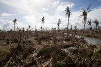 Typhoon Haiyan laid waste to vast areas near Tanauan, Philippines. A UMNS photo by Mike DuBose
