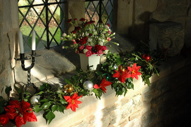 Advent Quiz: Why Do Churches Use Evergreens As Christmas
