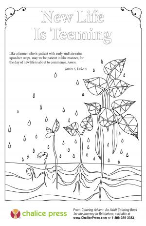 Advent coloring page: New Life Is Teeming