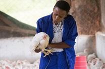 Agatha Muagura speaks softly to a chicken as part of a training exercise at the Africa University farm in Mutare, Zimbabwe.