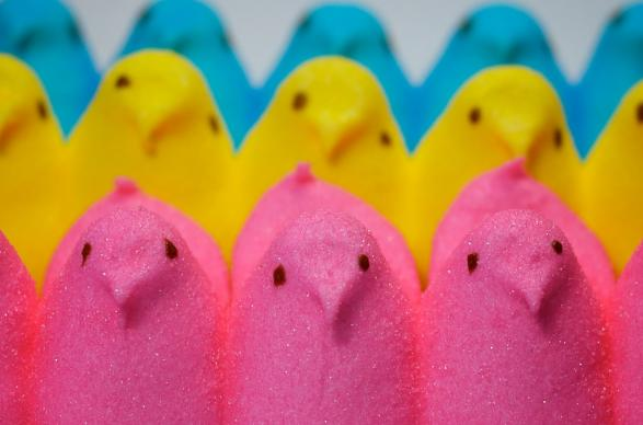 Marshmallow chicks are a favorite Easter treat. Photo by Benjamin Golub, courtesy of Flickr.