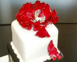 best wedding cake denver top 10 wedding cakes bakeries in denver co custom cake 11439