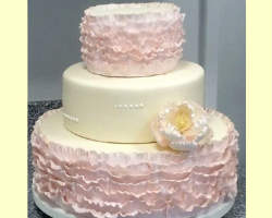 best wedding cakes san francisco top 10 wedding cakes bakeries in san francisco ca custom 11678