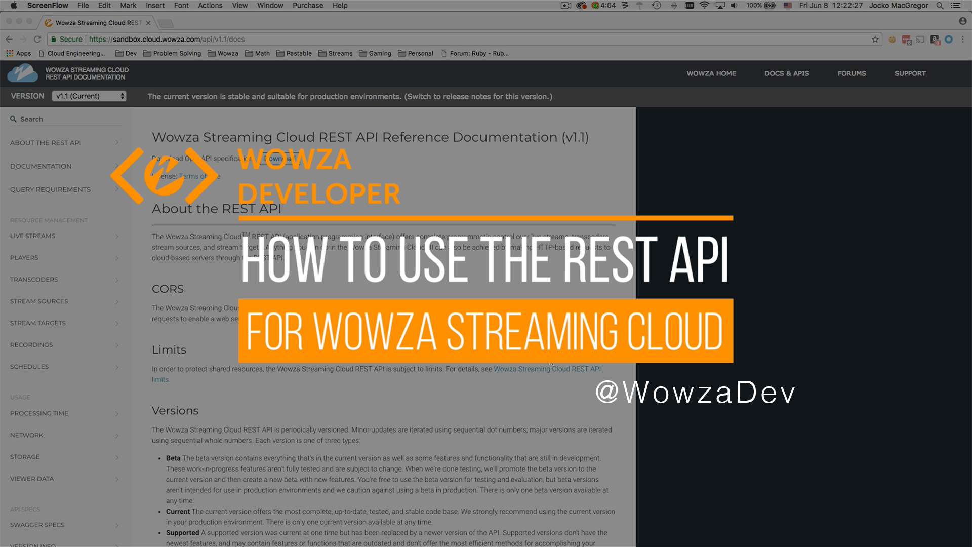 REST API: What It Is and How to Use One for Streaming | Wowza
