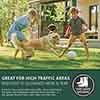 Multi-Purpose & Hardwearing Grass Seed Mix - Back Lawn, 1kg
