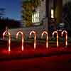 Set of 6 Candy Cane Stakes