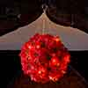InLit Poinsettia Ball