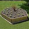 Hexagonal Raised Bed