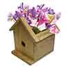 Outdoor Sweet Pea Birdhouse